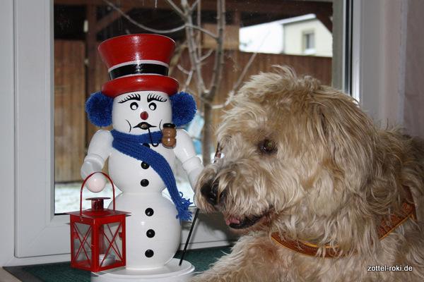 der Schneemann-roki